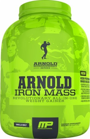 Iron Mass (Arnold Series)
